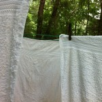 Green Laundry © 2012 NATE METZ digital photograph green cleaning air dry laundry line dry towels