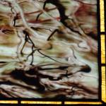 wglass15DSC_1368