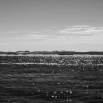 ocean01DSC_1921