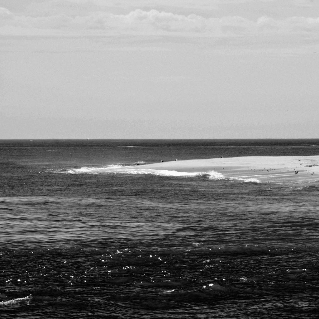 ocean06DSC_2065